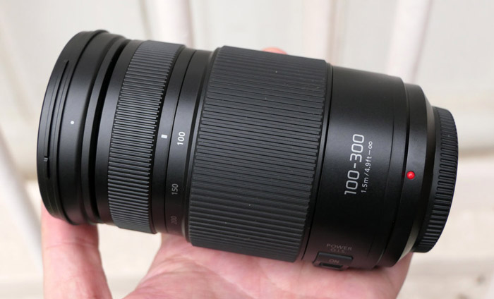Panasonic 100-300mm f/4-5.6 II O.I.S.